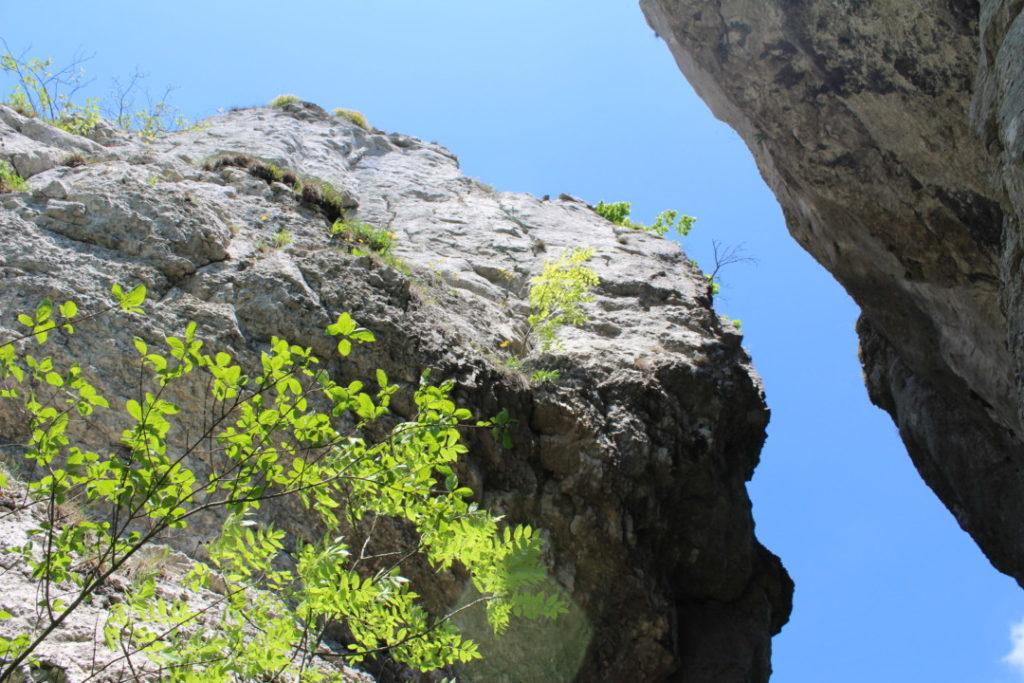 Wanderung-zur-Binghöhle-Fränkische-Schweiz- (14)