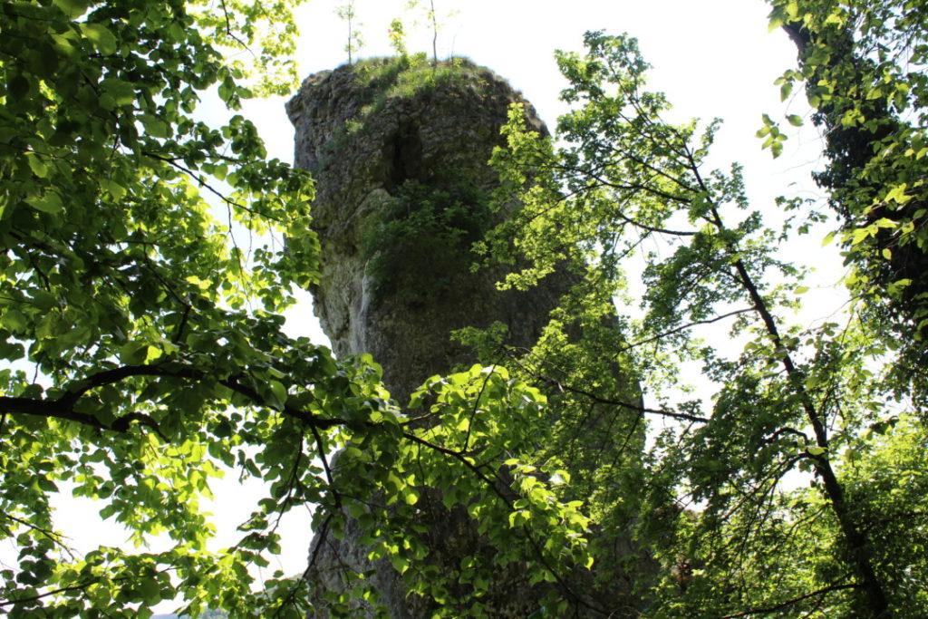 Wanderung-zur-Binghöhle-Fränkische-Schweiz- (7)