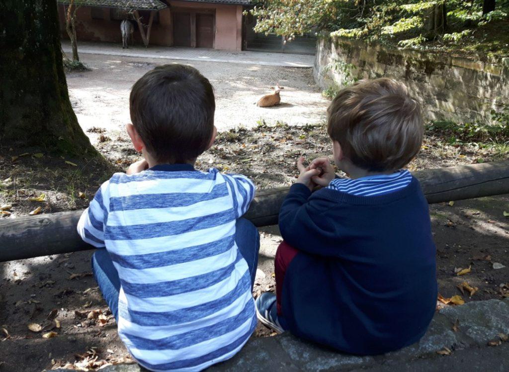 Tiergarten Nürnberg - Familienausflug