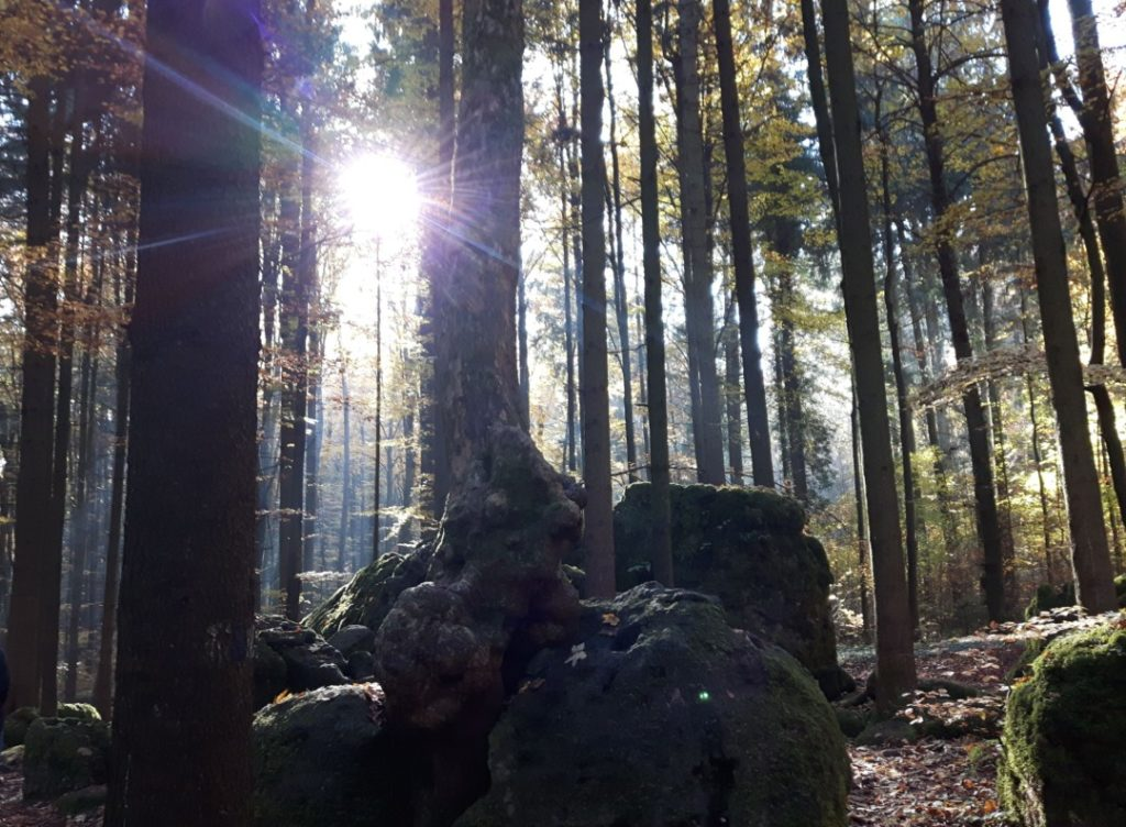 druidenhain-muggendorf-fraenkische-schweiz-familienausflug-2