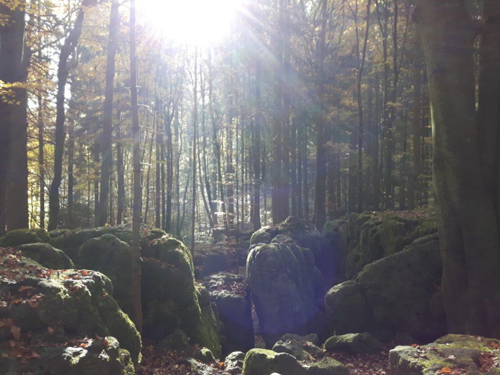 druidenhain-muggendorf-fraenkische-schweiz-familienausflug-5