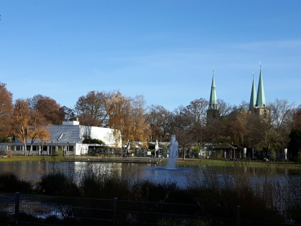 stadtpark-nuernberg-enten-fuettern-5