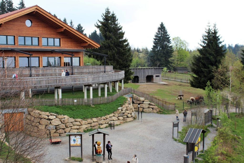 Bayerischer Wald - Sankt Englmar - Wald Wipfel Weg