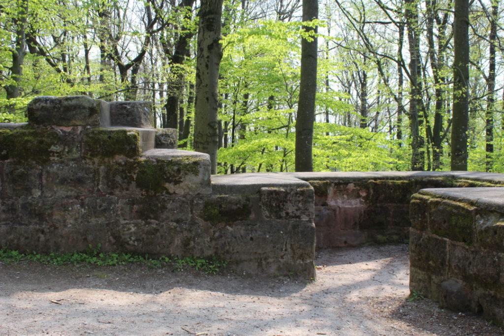Familienausflug - Alte Veste Fürth - Dambach (3)
