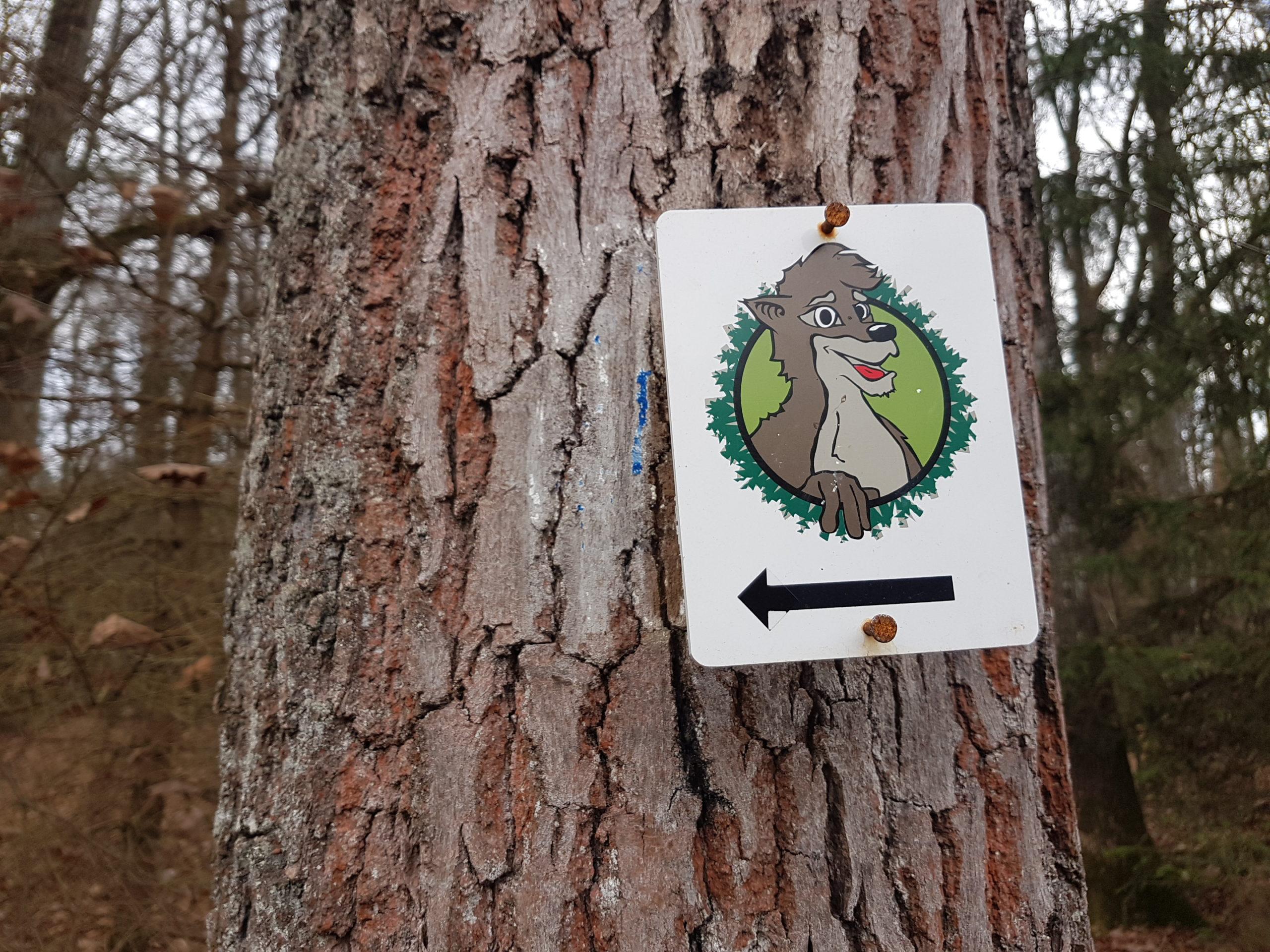 Waldentdeckerpfad Bruderwald Entdecke Bruder Wald