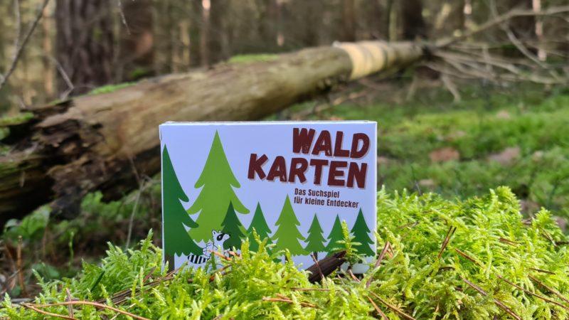 Waldkarten Waldkartensuchspiel Kinderbeschäftigung Waldentdecker